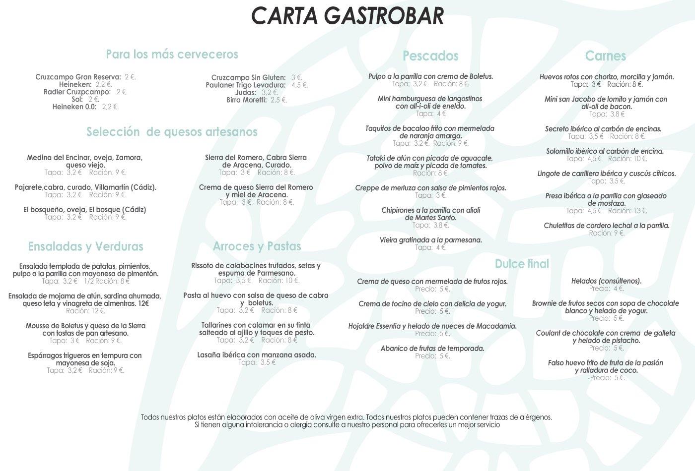 Carta Gastrobar Restaurante Essentia, Aracena (Huelva).